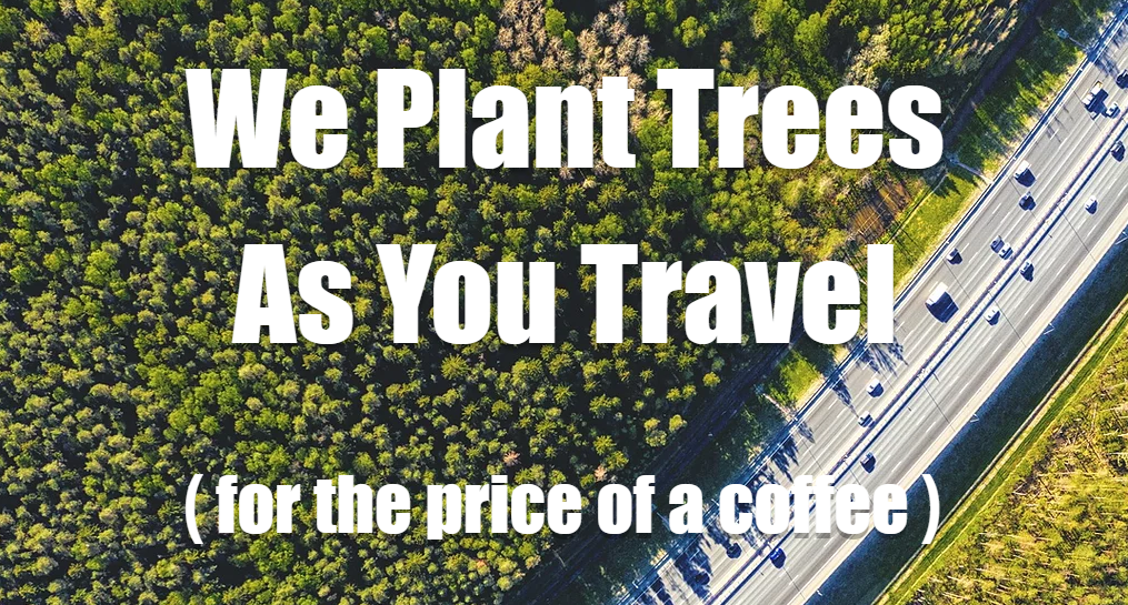Focus Travel Partnership & Trees4Travel Working together to make travel sustainable